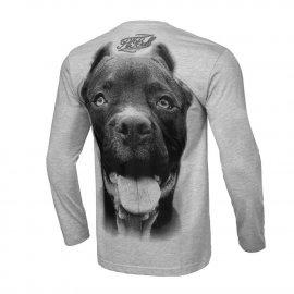 Koszulka z długim rękawem Pit Bull Pitbull IR - Szara